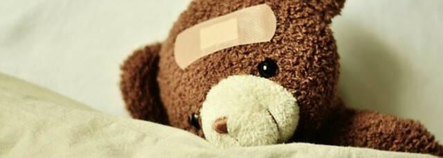 Teddy © Tous droits réservés