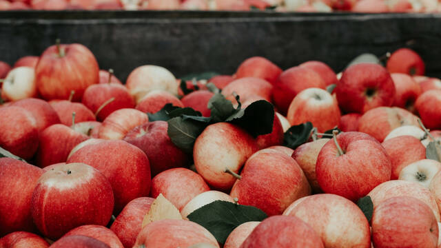 Pommes © Joanna Nix - Unsplash